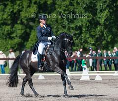 150507_2015_Sydney_CDI_GP_698.jpg (FranzVenhaus) Tags: sydney australia nsw newsouthwales aus equestrian dressage siec