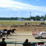 harness racing thumbnail