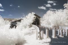 Le Vieux Pont Couvert (Sous l'Oeil de Sylvie) Tags: pont pontcouvert bridge coveredbridge pontperreault notredamedespins beauce qubec infrarouge infrared ir sousloeildesylvie canon g11modifipourir t summer 2016 july juillet arbres trees