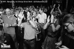 2016 Bosuil-Het publiek bij de 30th Anniversary Steady State 95-ZW