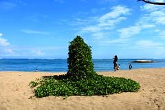 Bali (borsha_dhara12) Tags: bali canon borsha