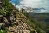 DSC03289 (Braulio Gómez) Tags: barranca barrancadehuentitán biodiversidad caminoamascuala canyon canyonhuentitan faunayflora floresyplantas guadalajara guardianesdelabarranca huentitán ixtlahuacandelrío jalisco mountainrange méxico naturaleza paisaje senderismo sierra