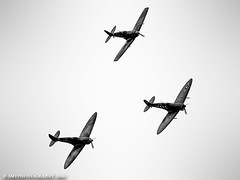 spits-sat-1-3-1 (Stewart Taylor (SMT Photography)) Tags: spitfire supermarine supermarinespitfire flight flyingdisplay flying fighter flyinglegends fighters formation wwii warbird worldwartwo history historic worldwar2 bedfordshire blackwhite blackandwhite raf royalairforce rollsroyce rollsroycemerlin photography photo thefightercollection tfc iwm iwmduxford duxford iconic