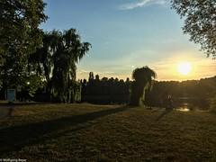 Erinnerung an den Amazonas II (BLN1989) Tags: berlin landschaft trauerweide bume sonne see gegenlicht