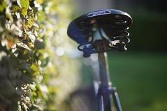 Brooks in the sun (FlyFotoFishing) Tags: sonya7ii f14 50mm canonfd brooks fahrrad sattel bike puch graz austria