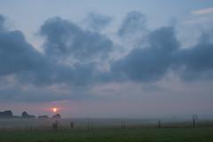 Misty Sunrise (Infomastern) Tags: sdersltt cloud countryside dimma fence fog horse hst landsbygd landscape landskap mist sky sol soluppgng sun sunrise exif:model=canoneos760d geocountry exif:focallength=28mm camera:make=canon exif:isospeed=100 camera:model=canoneos760d geostate geolocation exif:lens=efs18200mmf3556is geocity exif:aperture=56 exif:make=canon