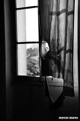 DSC_0086 cópia (M.SOARES) Tags: convento ipiranga abandonado prediosantigos salesiana