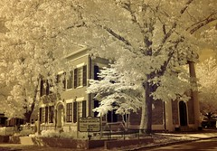 Gold Museum (Neal3K) Tags: dahlonega georgia courthouse trees ir infraredcamera kolarivisionmodifiedcamera bricks sepia