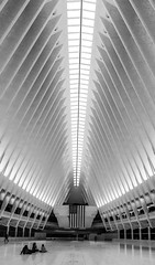 WTC Transit Hub, NYC DSC02679-Edit (nianci pan) Tags: abstract transithub santiagocatlatrava nyc newyorkcity manhattan trainstation curve line pattern geometry geometric city cityscape landscape urban nianci pan sony sonyalpha dslr sonyphotographing