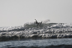 rc00011 (bali surfing camp) Tags: surfing bali surfreport surflessons sanur 10082016