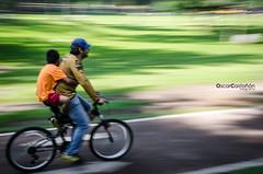 Paseo dominical (Oscar Castan Fotografa) Tags: familia pumasunam ciclopistacu unam pumas cdmx ciudaddemexico family bicicleta bycicle bike velocidad velocity fotografiaenmovimiento motionpicture barrido