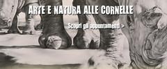 Arte e Natura alle cornelle (lecornelle) Tags: eventi natura disegno lecornelle parco parconaturaviva