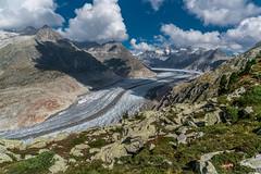 Icy (Swiss.PIX) Tags: sua svizra switserland schweiz switzerland sony suisse suiza svizzera szwajcaria vcarsko vice sun schnee ice glacier gletscher aletschglacier alpen aletschgletscher jungfrau unesco worldheritage bettmeralp bettmerhorn riederalp