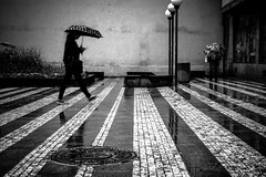 Umbrella Parade 2 (tomabenz) Tags: sony a7rm2 contrast praha street photography prague monochrome bw umbrella rainy day human geometry black white noiretblanc praga streetview blackandwhite humaningeometry rainyday sonya7rm2 streetphotography