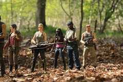 The Survivors (rodstoybox) Tags: ford walking dead toys andrea abraham dixon daryl carol zombies figures mcfarlane the michonne tyreese