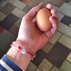 "The hens helped get this morning off to a lovely start. When I went out to do my morning chores, this picture perfect speckled egg was waiting for me in the nest box. All of our heritage breed hens lay brown eggs, but these dark speckled eggs are my favor • <a style=""font-size:0.8em;"" href=""http://www.flickr.com/photos/54958436@N05/17327374186/"" target=""_blank"">View on Flickr</a>"
