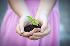 New life (hobbes266) Tags: life new pink plant green nature girl leaves leaf holding hands bokeh growth soil growing newlife