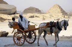 82Jp T1 32cLML-TLzn_web (Jan Smook) Tags: horse analog 1982 desert pyramid egypt slide scan cairo epson giza diapos v370