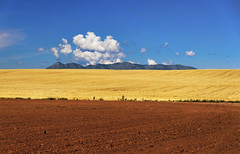 Somewhere in Colorado (Fil.ippo) Tags: sky panorama mountain colors lines yellow landscape colorado geometry layers filippo paesaggio d5000 filippobianchi