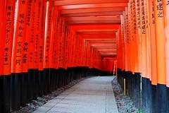 Fushimi Inari-taisha(伏見稲荷大社) torii (Adam Wang) Tags: travel red japan kyoto gate donation torii fushimiinaritaisha 伏見稲荷大社