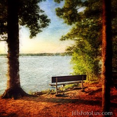 Watch the world go by.... (jillsfotoluv) Tags: trees lake painterly nature water bench relax outdoors view horizon scenic shore artistry