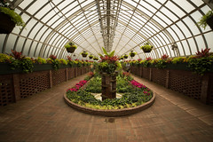 surreal (Beau Finley) Tags: phippsconservatory beaufinley pittsburgh plants trees botanic atrium greenhouse conservatory