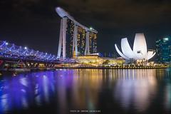 MARINA BAY AT NIGHT (::: a j z p h o t o g r a p h y :::) Tags: singapore marinabay marinabaysands artsciencemuseum architecture reflection waterreflection longexposure outdoor photography nightscape nightphotography cityscape citylight travel tourism touristattraction landmark