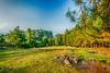 Mersin - Ayvagediği - 1 (omardaing) Tags: yellow landscape nature blue green manzara doğa summer outdoor turkey mersin pentax k10d turkiye trekking tamron 1024mm