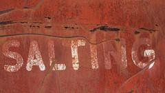 salting-8010 (blairware) Tags: truck signage junkyard salter