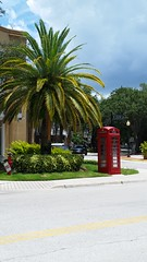 Telephone Taxi (Michel Curi) Tags: street red green tampa florida telephone palmtrees british hydepark fl telephonebooth downtowntampa lovefl