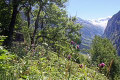 Framing the Divide (Fozzman) Tags: summer vacations 2016 zillertal ziller valley alps alpen