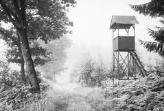 Raised Hide (b_schaulich) Tags: hunter hunting blackwhite jger hochsitz wood forest mist fog nebel germany deutschland hankhausen niedersachsen lowersaxony