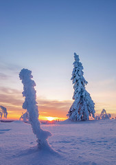 Lappland - Laponie ( Mathieu Pierre photography) Tags: lappland laponie finnland lapland snow north night sky light silence nature landscape northern polar circle