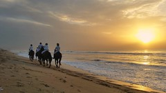 Marina beach (ossington) Tags: sunrise india tamilnadu chennai