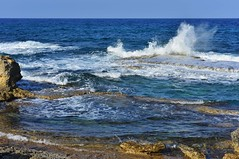 (orientalizing) Tags: aphendrika bay coast crashingwaves cyprus dipkarpazpeninsula karpas karpasia karpasspeninsula northeasterncyprus northerncyprus rizokarpassoregion seascape shore splashing turkishoccupiedcyprus