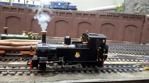 Steam locomotive on the garden railway