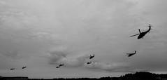 Flocking behaviour (Mattias Lindgren) Tags: 24mmf28d nikond600