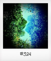 """#DailyPolaroid of 17-8-16 #324 • <a style=""""font-size:0.8em;"""" href=""""http://www.flickr.com/photos/47939785@N05/29600645871/"""" target=""""_blank"""">View on Flickr</a>"""