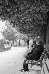 Square Jean XIII (curt.bauer) Tags: street paris france square photography frankreich jean mm 18 50 notre dame xiii