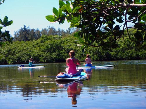 5-1-15-Paddleboard-Yoga-Teacher-Training-Sarasota-FL 38