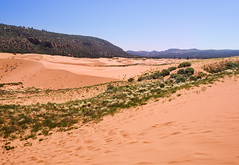 Coral Pink Sand Dunes, Utah, United States (weesam2010) Tags: pink blue sky coral utah sand desert dunes united states