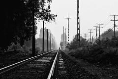 Linea Frrea. (ruizmussa) Tags: chile santiago tren linea maip