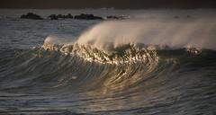 IMG_0927.jpg (Kaaa-Ching!) Tags: newzealand surf waves offshore surfing nz wellington northisland reef breakerbay righthander wellingtonnz