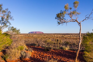 Uluru in the distance!