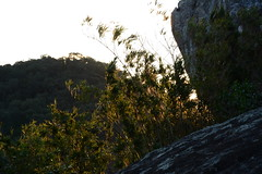 Sunrise (Gustavo Cardona e Almeida) Tags: sky green nature paraná sunrise nikon para natureza ceu piraquara d7100
