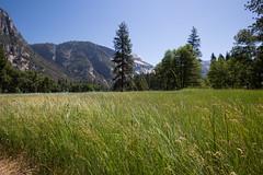Yosemite (Antonio J. Benete) Tags: road trip usa west coast us estados eeuu unidos