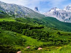 Es un divino placer (Jesus_l) Tags: espaa europa asturias picosdeeuropa naranjodebulnes colladodepandbano jessl