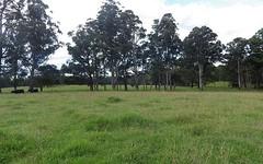 9408 Armidale Road, Tyringham NSW