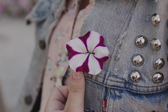 IMG_8771 (TheFreckledFrenzy) Tags: flowers teen punk pastel goth hipster modern portrait dof bouquet purple pink pastels