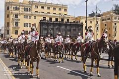 La Guardia presidencial - 9395 (Marcos GP) Tags: marcosgp lima peru guardia ejercito caballo soldados desfile plaza